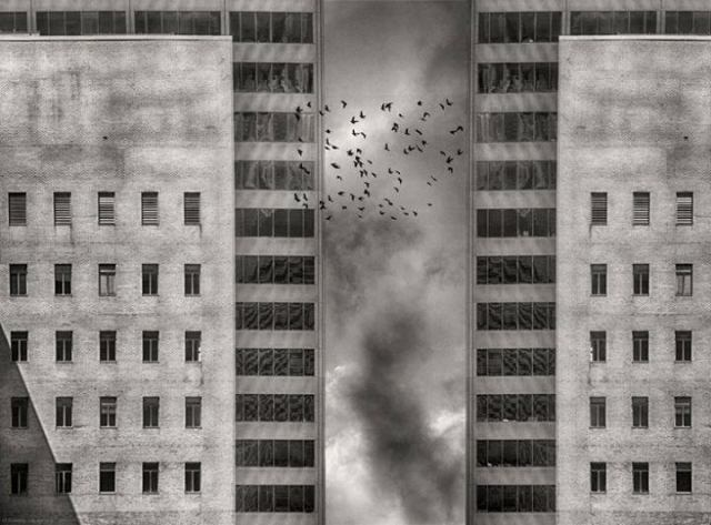 Migration by Roxana Labagnara