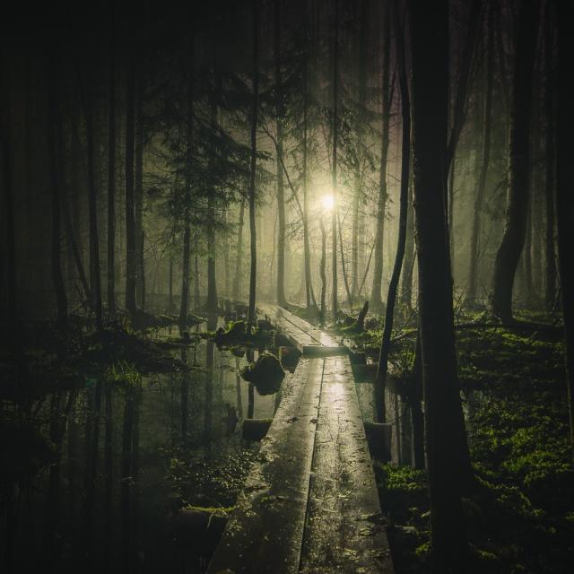 Mikko-Lagerstedt-Pathway